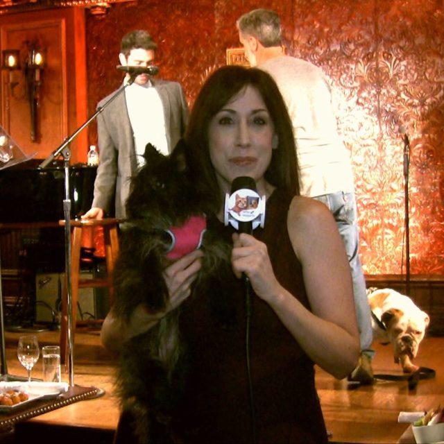 Such fun covering humanesocietyny Best In Shows cabaret Be surehellip