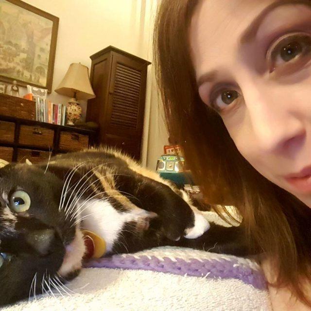 Selfie with Fanny! calico calicocat cats catsofinstagram allforanimalstv