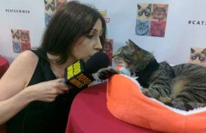 Susan & Oskar The Blind Cat