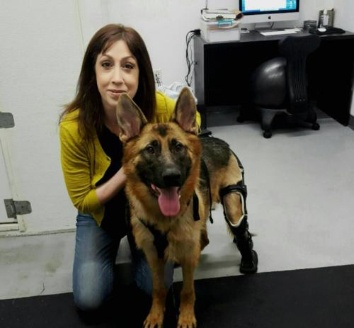 Susan & Buddy the ACC rescue dog getting physical therapy at Water4Dogs.