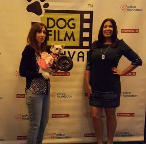 dog film festival 2016-1