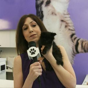 filming an afa episode