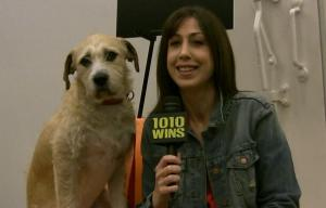 susan and sandy from bwy show annie